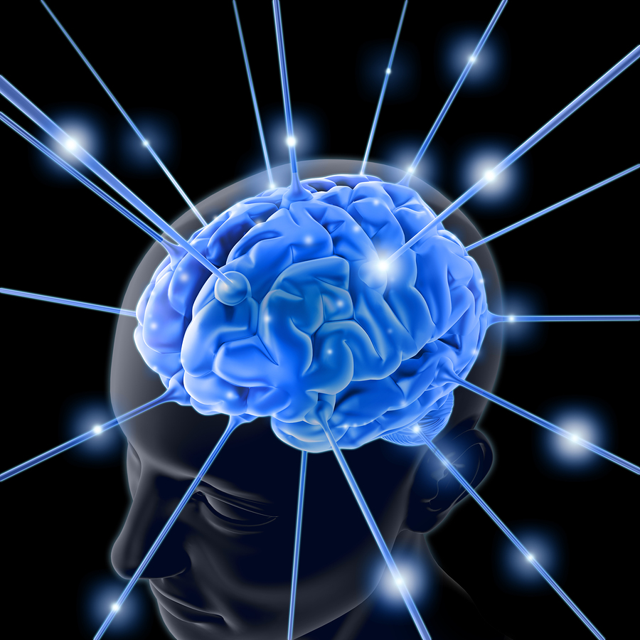 bigstock-The-Brain-1713803
