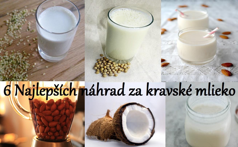 6 najlepších náhrad za kravské mlieko